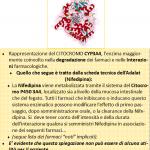 Citocromo P450 3A4